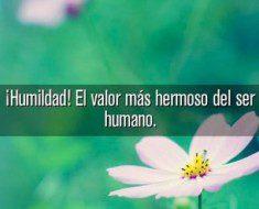 humildad el valor mas hermoso del ser humano 235x190 ¡Humildad! El valor más hermoso del ser humano