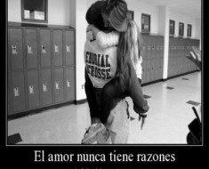 el amor nunca tiene razones 235x190 El amor nunca tiene razones