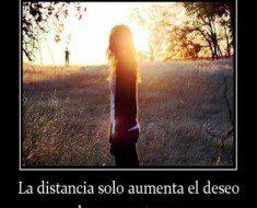 la distancia solo aumenta el deseo de reencontrarse 235x190 La distancia solo aumenta el deseo de reencontrarse