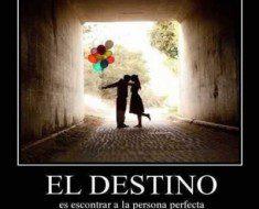 el destino es encontrar a la persona perfecta 235x190 El destino es encontrar a la persona perfecta