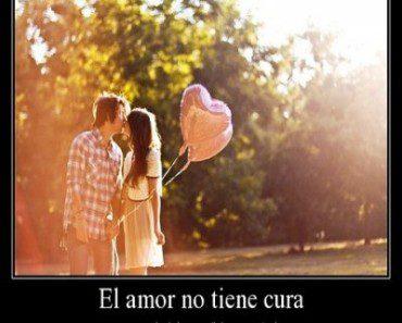 el amor no tiene cura 370x297 El amor no tiene cura